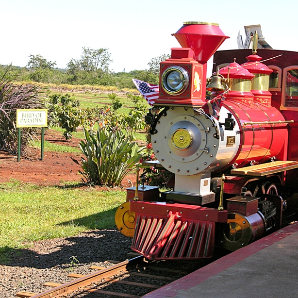 The Dole Plantation Express Train Tour