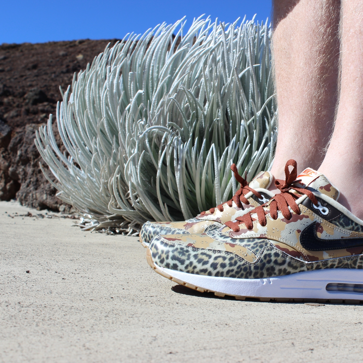 Silversword and Limited Edition Nike Atmos