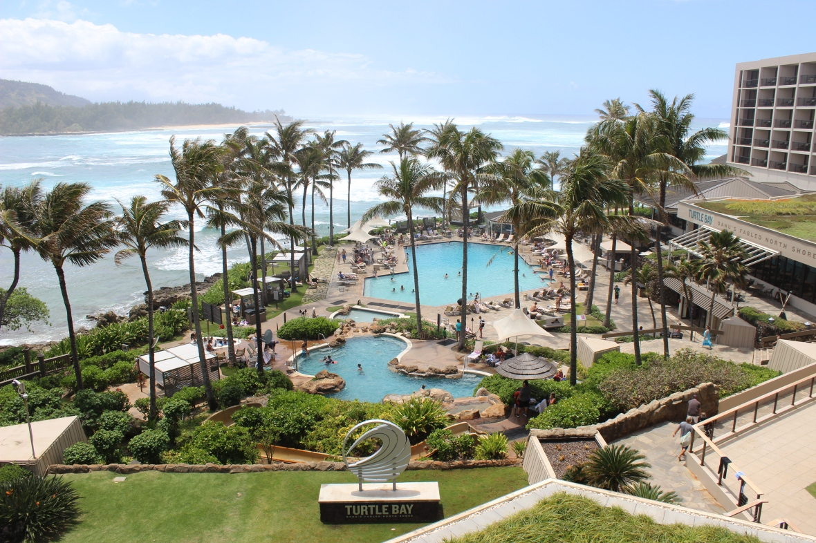 Turtle Bay Grounds