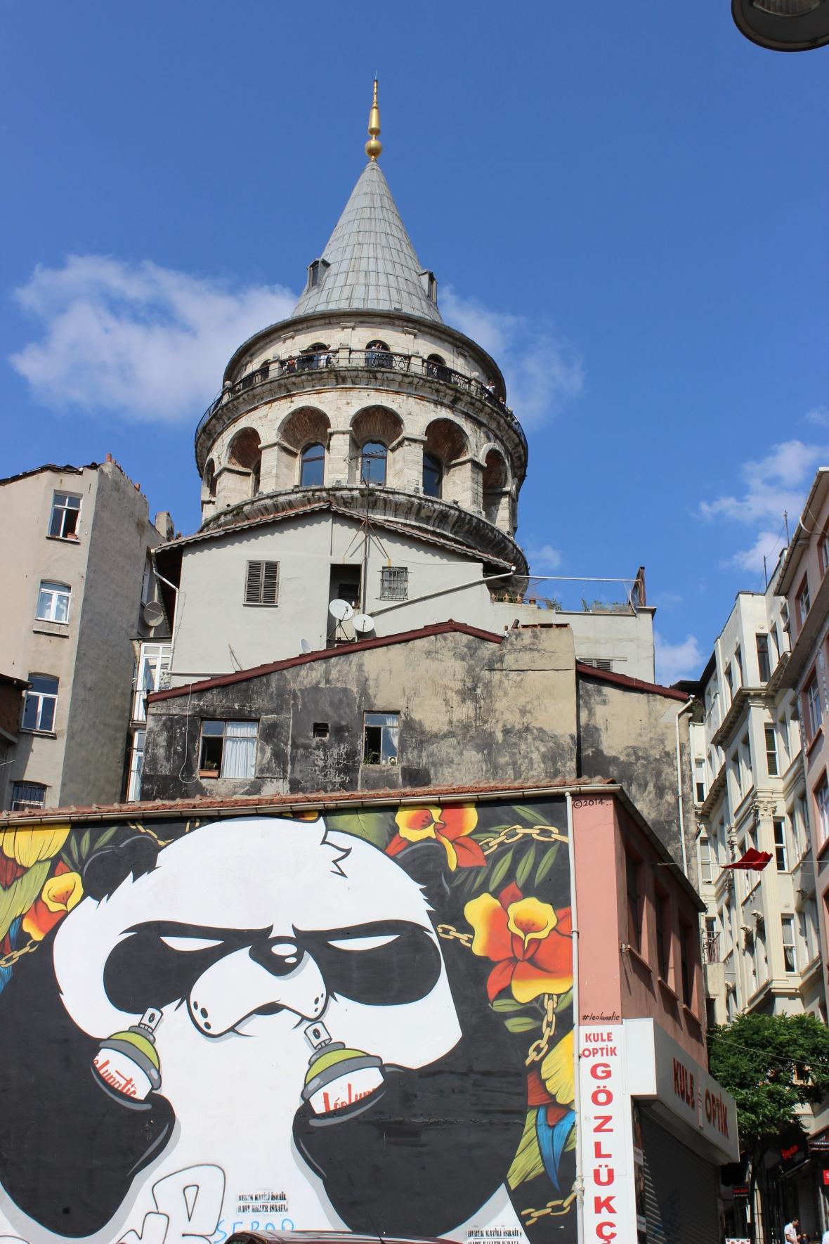 Hipster Panda Graffiti Istanbul