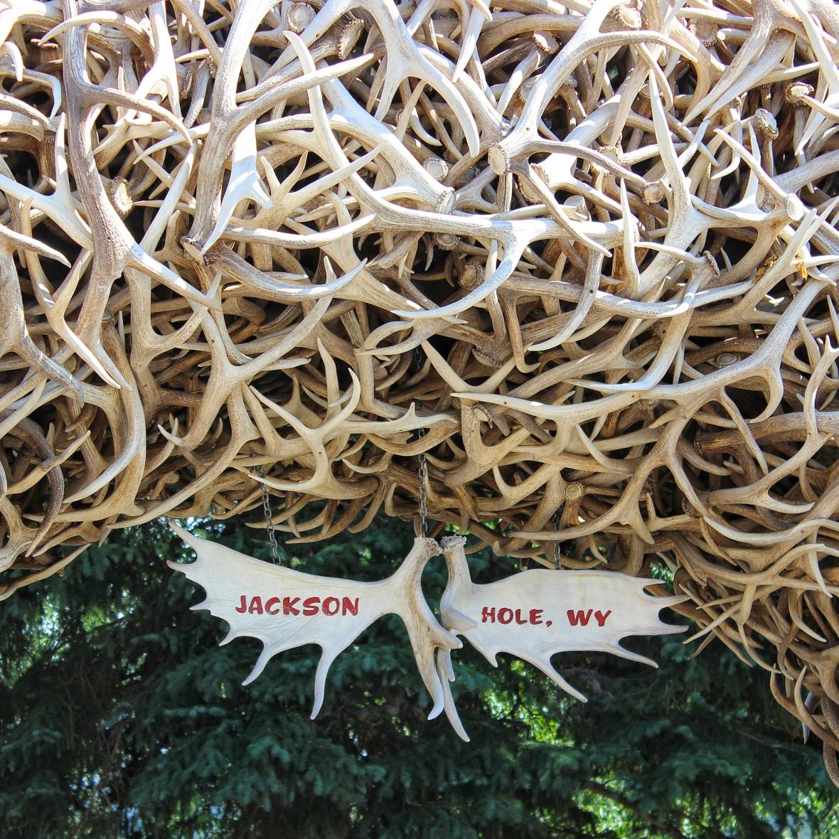 Jackson Hole Square Antelope Antlers Signage