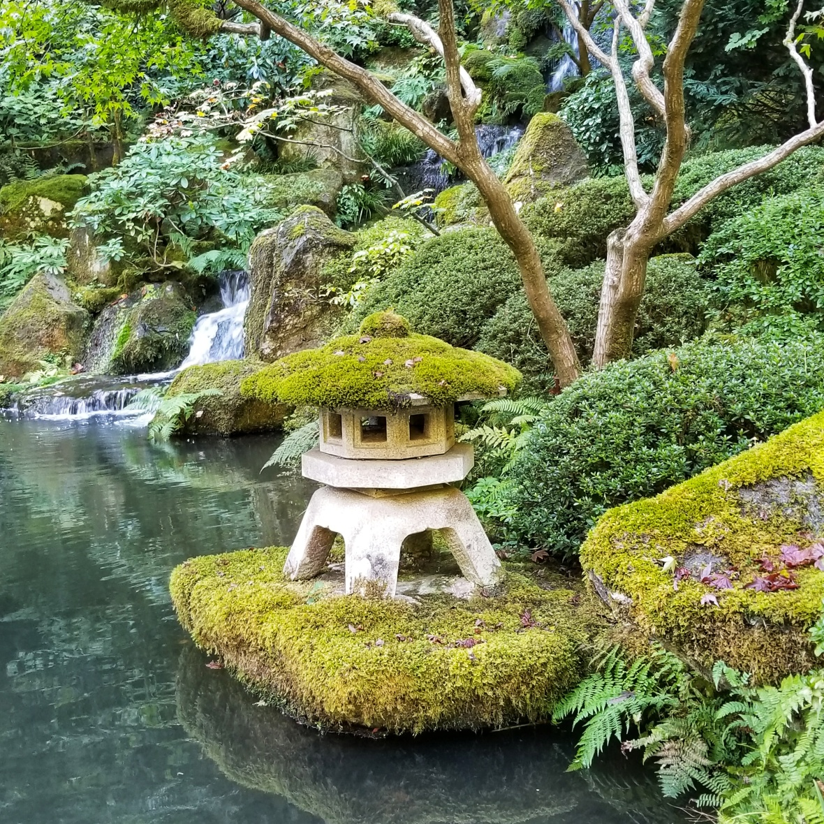 Japanese Garden - Heavenly Falls