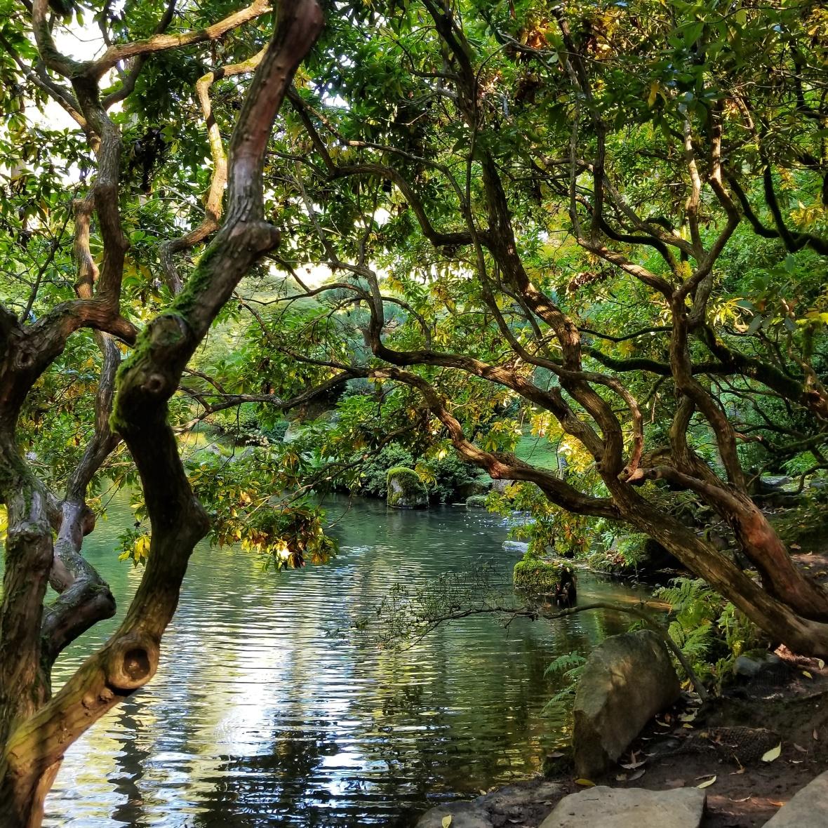 Strolling ponds