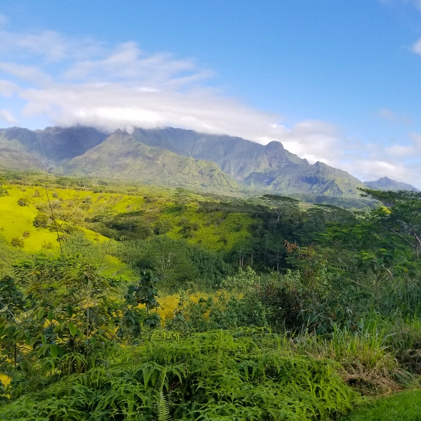 Mount Wai'ale'ale on the island of Kauai is often referred to as the wettest spot on earth